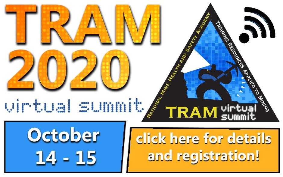 2020 virtual summit