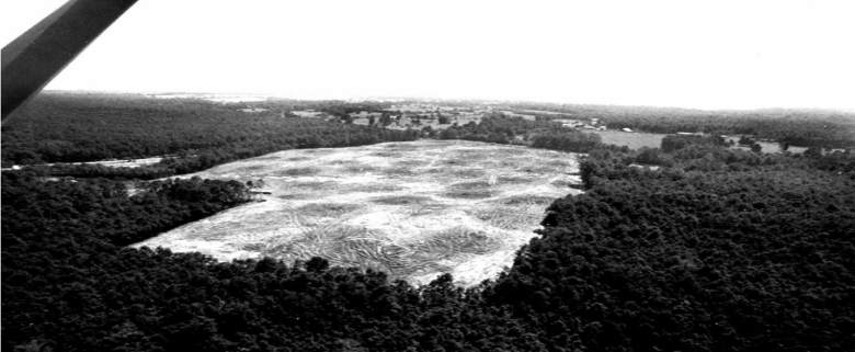 Aerial shot of Academy location before construction began